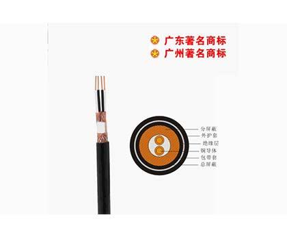 DJYPVP-300/500V控制电缆