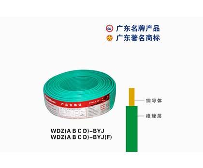 WDZ(A B C D)-BYJ珠江